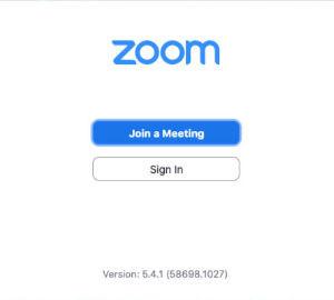 Zoom-1.jpg