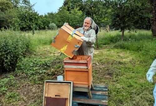 Beehive5.jpg