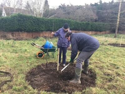 Planting-Day-Jan-2018-4.jpg