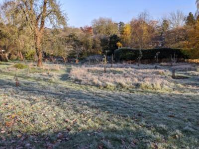 Frosty-Orchard2.jpg