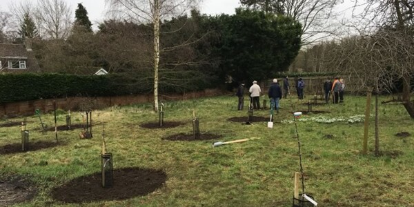 Planting-Day-Jan-2018-9.jpg