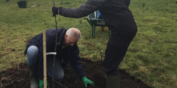 Planting-Day-Jan-2018-1.jpg