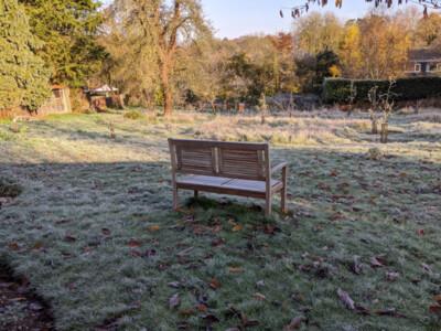 Frosty-Orchard4.jpg