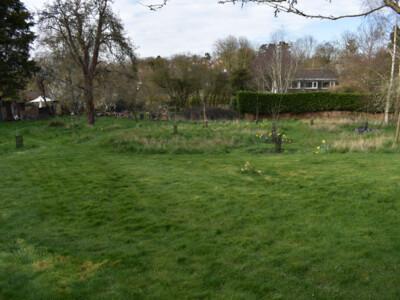 Orchard-21-6.jpg