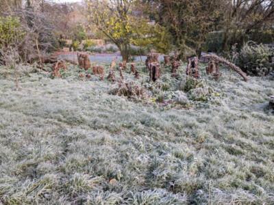 Frosty-Orchard3.jpg